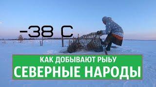 Download КАК ДОБЫВАЮТ РЫБУ ХАНТЫ, СЕВЕРНЫЕ НАРОДЫ, в мороз - 38 Video