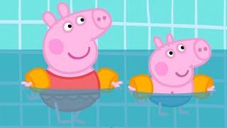 Download Kids Videos | Peppa Pig New Episode #220 | New Peppa Pig Video