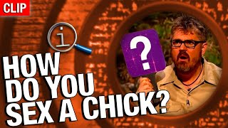 Download QI | How Do You Sex A Chick? Video