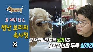 Download 세상에 나쁜 개는 없다 - 초 예민 보스 성난 보리의 속사정 #002 Video