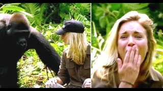 Download Man Introduces His Wife To The Wild Gorilla He Raised And It Doesn't Go As Planned At All Video