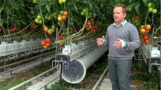 Download Greenhouse promo video for Nature Fresh Farms Leamington Video