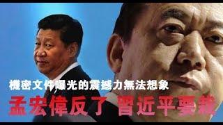 Download 孟宏伟反了 习近平要栽 机密文件曝光的震撼力无法想象 Video
