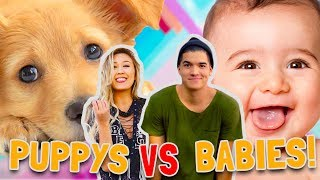 Download PUPPIES vs BABIES! (CUTE CONTEST) Video
