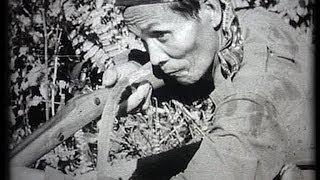 Download Indonesia: Pontianak (Borneo) 1948 struggle against Japanese Video