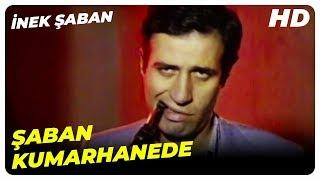Download İnek Şaban / Kemal Sunal - Şaban Kumarhanede Video