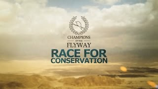 Download Champions of the Flyway - Birding Extreme! Video