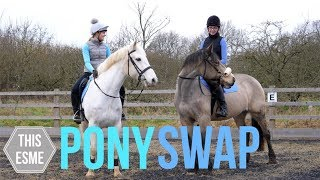 Download PONY SWAP! | Groom, Tackup and ride with us | This Esme Video