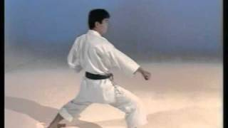 Download Kihon Kata - Ohta Sensei Video