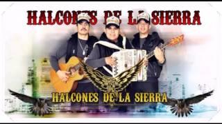 Download Popurri De Corridos Halcones De La Sierra En Vivo 2013 Video