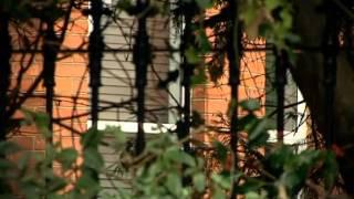 Download TV3 - Ireland's Secret Cults Video
