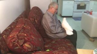 Download Funny Joseph hanging out with grandpa😍😍😍 Video