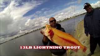 Download SANTA ANA RIVER LAKE TROUT FISHING 3/1/2015 Video