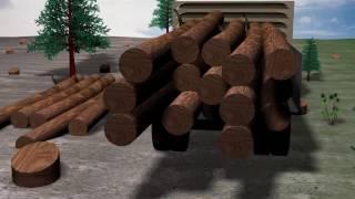 Download Deforestation Animation Video Video