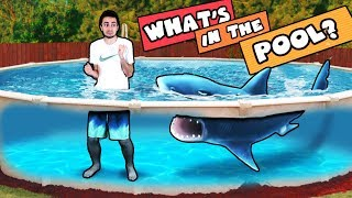 Download WHAT'S IN THE POOL CHALLENGE! (Ahhhh!!! IT'S ALIVE) Video