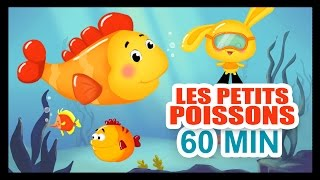Download Les petits poissons dans l'eau - 1H DE COMPTINES POUR LES PETITS - Titounis Video