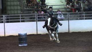 Download Draft Horse Barrel Racing Video