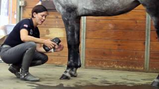 Download Show Jump Horse Boots - Professional's Choice Video