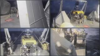Download Dive #36 - Chamorro Seamount -FK161129 - SuBastian Video