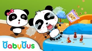 Download Bed Bugs and Beyond | Animation For Babies | BabyBus Video