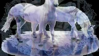 Download Gheorghe Zamfir - I dreamed a dream. Video