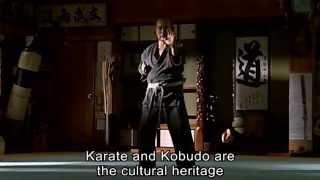 Download Trailer For Origin of Karate Trailer Video