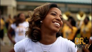 Download Southern University Fabulous Dancing Dolls Highlights ″SU Campaign Week Edition″ 2017 Video