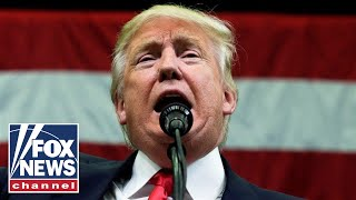 Download Trump holds campaign rally in Minnesota Video