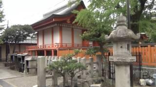 Download 25 Florian auf Tour - Kyoto 2.7 - UNCUT Tag 1 Video