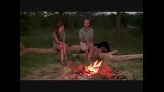 Download Safari Live : Fireside Chat with Jamie, James and Brent April 03, 2016 Video