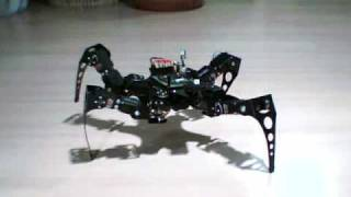 Download Quadruped robot long step walking Video