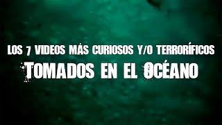 Download 7 videos más curiosos y (terroríficos) del océano #SharkWeek Video