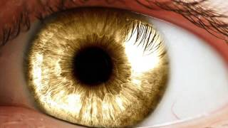 Download Extremely Powerful Biokinesis 3 Hour - Get Golden Eyes Subliminal | Change Your Eye Color To Golden Video