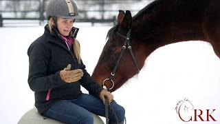 Download How to Ride the Sitting Trot without Bouncing Video
