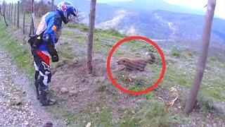 Download Biker Finds Creature Stuck In A Fence And Realizes What He Has To Do Video