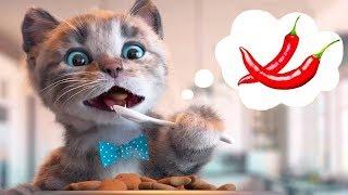 Download Little Kitten Preschool Adventure Educational Games -Play Fun Cute Kitten Pet Care Learning Gameplay Video