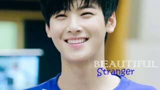 Download [FMV]Beautiful Stranger CHA EUNWOO.ver Video
