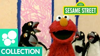 Download Sesame Street: Elmo's World: Penguins Video