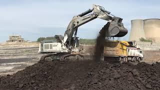 Download Liebherr 984 Excavator Loading Coal On Trucks - Sotiriadis Brothers Video