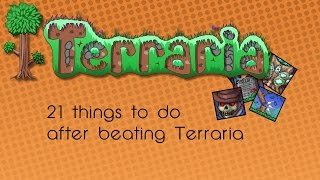 Download 25* things to do after you beat Terraria Video