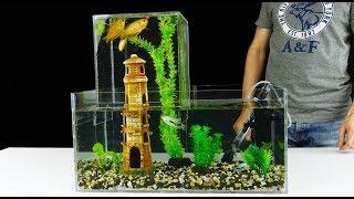 Download How to Build Unique Multi Level Aquarium v2.0 Video