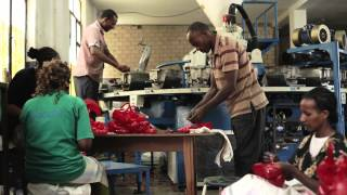 Download Upgrading Ethiopian leather and leather products industry Video