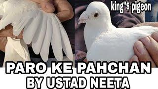 Download PARO KE PAHCHAN BY USTAD NEETA JI.. Video