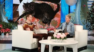 Download Dave Franco's Cats Took Over His Life Video