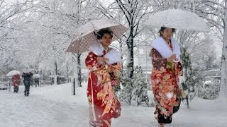 Download Nevicata a tokyo~ snow in tokyo Video