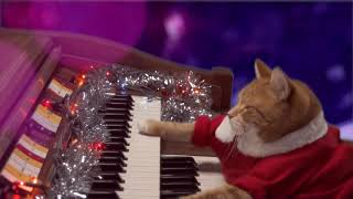 Download KEYBOARD CAT Santa Clause Is Coming To Town! 2017 Video