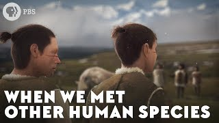Download When We Met Other Human Species Video