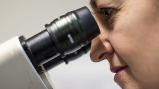 Download Cancer-fighting gene treatment approved by FDA Video