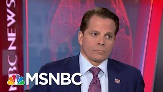 Download Anthony Scaramucci Reacts To President Donald Trump's Recent Comments | Velshi & Ruhle | MSNBC Video