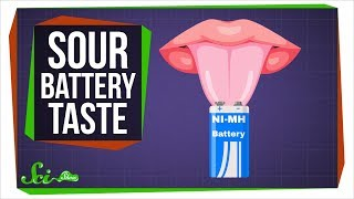 Download Why Do Batteries Taste Sour? Video